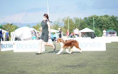 Queenie devient Championne de Slovénie